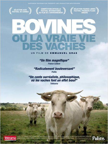 AFFICHE-BOVINES
